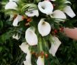 Bouquet Triticum